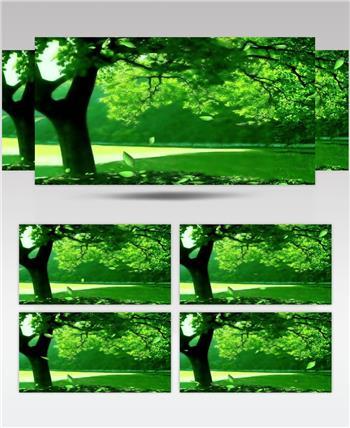 梦幻童话森林 款A00143梦幻童话森林无音乐 led视频素材
