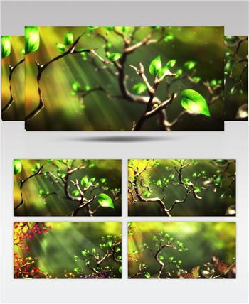 套唯美小清新树叶树林阳光空镜头 大自然春天夏天绿叶动态视频素材树叶蝴蝶
