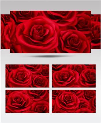 -红玫瑰浪漫款红玫瑰浪漫心型唯美婚礼背景2 婚礼系列大全 婚庆