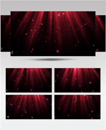 -玫瑰飘落花瓣款Y4855玫瑰花瓣星光 led视频素材库