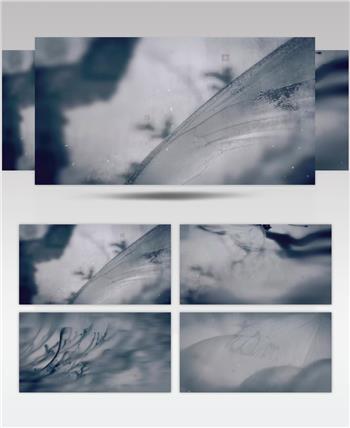 水墨蝴蝶视频素材